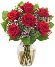 Kız arkadaşıma hediye 6 kırmızı gül  Aydın internetten çiçek siparişi