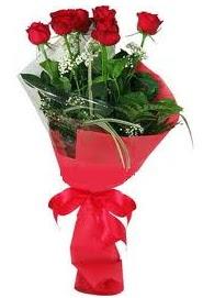 Çiçek yolla sitesinden 7 adet kırmızı gül  Aydın internetten çiçek satışı