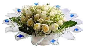 Aydın çiçek online çiçek siparişi  11 adet Beyaz güller özel cam tanzim