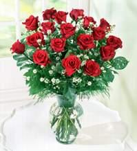 Aydın internetten çiçek satışı  9 adet mika yada vazoda kirmizi güller