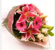 1 dal kazablanka ve mevsim çiçekleri  Aydın internetten çiçek siparişi
