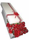 Aydın çiçekçi telefonları  11 adet 1.kalite magnum güller