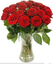Aydın çiçek mağazası , çiçekçi adresleri  Vazoda 15 adet kırmızı gül tanzimi