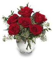 Vazo içerisinde 5 adet kırmızı gül  Aydın çiçekçi mağazası