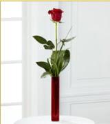 Vazo içerisinde 1 adet kırmızı gül  Aydın internetten çiçek siparişi