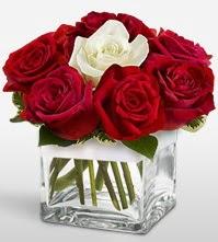Tek aşkımsın çiçeği 8 kırmızı 1 beyaz gül  Aydın uluslararası çiçek gönderme