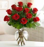 Vazo içerisinde 12 kırmızı gül  Aydın çiçek satışı