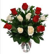 Vazo içerisinde 6 kırmızı 6 beyaz gül  Aydın hediye çiçek yolla