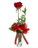 vazo içerisinde 1 adet kırmızı gül  Aydın çiçekçi telefonları