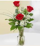 Vazo içerisinde 3 adet kırmızı gül  Aydın çiçek satışı