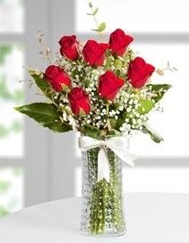 Cam vazoda 7 adet kırmızı gül  Aydın çiçek , çiçekçi , çiçekçilik