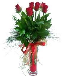 vazo içerisinde 5 kırmızı gül  Aydın güvenli kaliteli hızlı çiçek