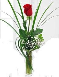 Cam içerisinde 1 kırmızı gül  Aydın çiçek gönderme sitemiz güvenlidir