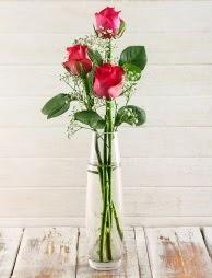 Cam içerisinde 3 kırmızı gül  Aydın çiçek satışı