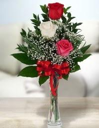 Camda 2 kırmızı 1 beyaz gül  Aydın ucuz çiçek gönder