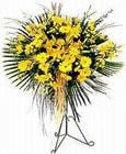 Aydın yurtiçi ve yurtdışı çiçek siparişi  Sari kazablanka Ferforje