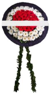mozele çiçeği  Aydın hediye sevgilime hediye çiçek