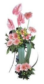 Aydın güvenli kaliteli hızlı çiçek  Pembe Antoryum Harikalar Rüyasi