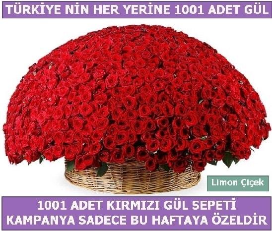 1001 Adet kırmızı gül Bu haftaya özel  Aydın İnternetten çiçek siparişi