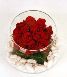 Cam fanusta 11 adet kırmızı gül  Aydın çiçek gönderme