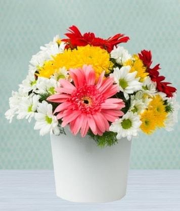 Seramik Vazoda Gelbera ve Papatya  Aydın çiçek gönderme