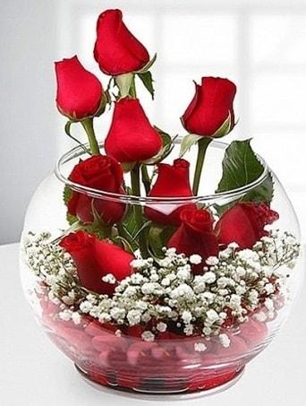 Kırmızı Mutluluk fanusta 9 kırmızı gül  Aydın çiçek siparişi sitesi