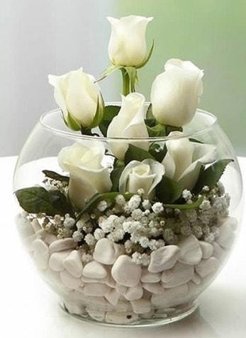 Beyaz Mutluluk 9 beyaz gül fanusta  Aydın çiçek siparişi sitesi