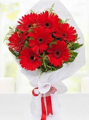 Kırmızı Gelbera Buketi  Aydın internetten çiçek siparişi