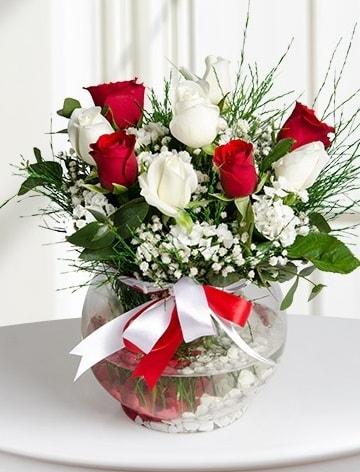 Aşk Küresi  5 beyaz 5 kırmızı gül fanusta  Aydın internetten çiçek satışı