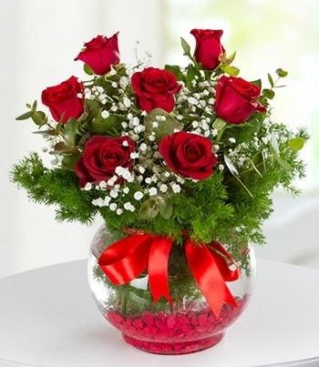 fanus Vazoda 7 Gül  Aydın çiçek , çiçekçi , çiçekçilik