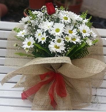 Papatya 1 adet kırmızı gül buketi  Aydın çiçekçiler