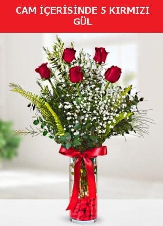 Cam içerisinde 5 adet kırmızı gül  Aydın çiçek siparişi sitesi