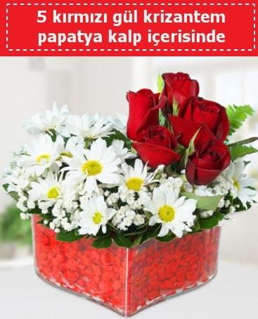 mika kalp içerisinde 5 kırmızı gül papatya  Aydın çiçek gönderme