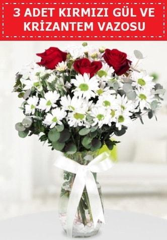 3 kırmızı gül ve camda krizantem çiçekleri  Aydın çiçek gönderme