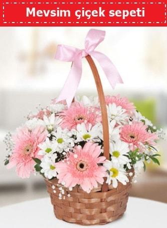 Mevsim kır çiçek sepeti  Aydın çiçek , çiçekçi , çiçekçilik