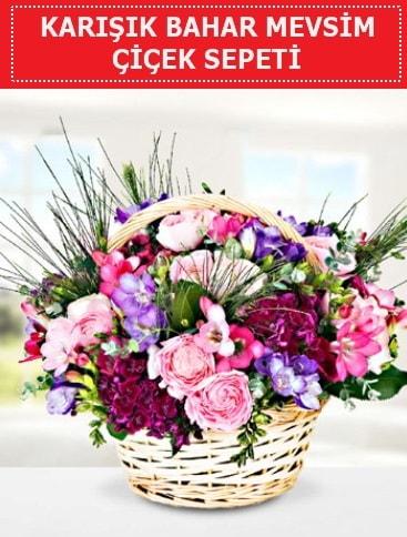 Karışık mevsim bahar çiçekleri  Aydın ucuz çiçek gönder