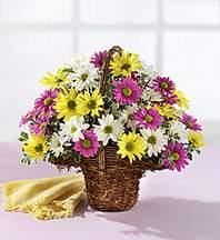 Aydın çiçekçiler  Mevsim çiçekleri sepeti