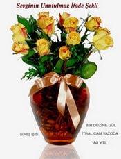 Aydın internetten çiçek satışı  mika yada Cam vazoda 12 adet sari gül